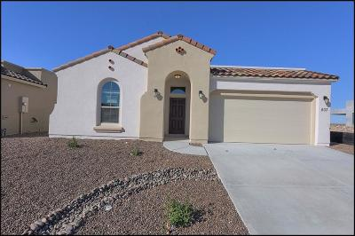 El Paso Single Family Home For Sale: 803 Wappenbury Road