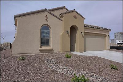 El Paso Single Family Home For Sale: 811 Wappenbury Road