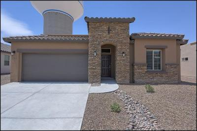 El Paso Single Family Home For Sale: 763 Wappenbury Road