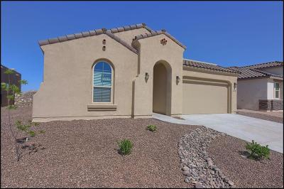 El Paso Single Family Home For Sale: 779 Wappenbury Road