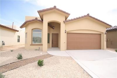 El Paso Single Family Home For Sale: 14925 Boer Trail Avenue