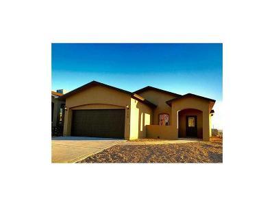 El Paso Single Family Home For Sale: 14917 Boer Trail Avenue