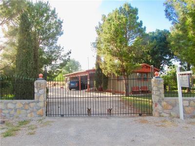 San Elizario Single Family Home For Sale: 1449 Sauco Road