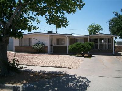El Paso Single Family Home For Sale: 9504 Lindsey Drive