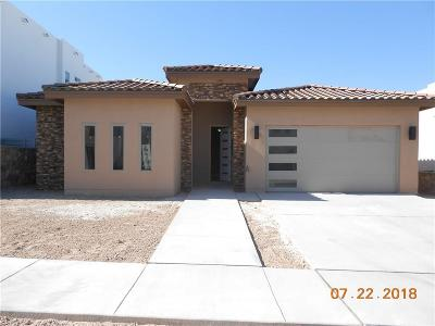 El Paso TX Single Family Home For Sale: $334,000