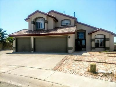 El Paso TX Single Family Home For Sale: $265,000