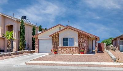 El Paso Single Family Home For Sale: 12357 Tierra Alamo Drive