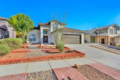 El Paso Single Family Home For Sale: 6080 Los Pueblos Drive