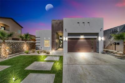 El Paso TX Single Family Home For Sale: $250,000