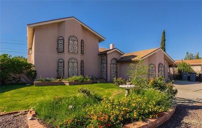 Single Family Home For Sale: 7316 Armistad Avenue