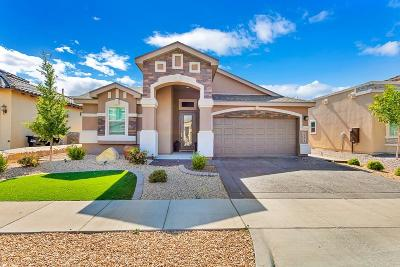 El Paso Single Family Home For Sale: 1141 Spofford Place