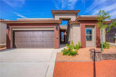 El Paso TX Single Family Home For Sale: $185,900
