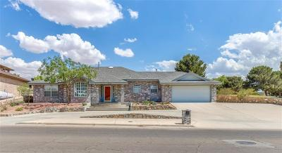 Horizon City Single Family Home For Sale: 3596 Alderwood Manor Drive