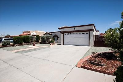 El Paso Single Family Home For Sale: 867 Mont Blanc Drive