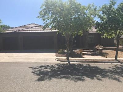 El Paso Single Family Home For Sale: 1456 Pioneer Ridge Drive