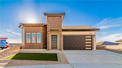El Paso Single Family Home For Sale: 773 Pixton