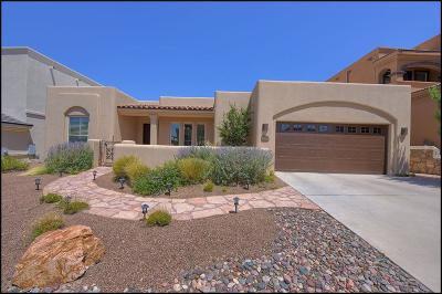El Paso Single Family Home For Sale: 6255 Franklin Dove Avenue