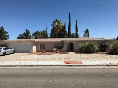 El Paso Single Family Home For Sale: 10609 Janway Drive