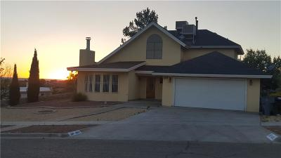 El Paso Single Family Home For Sale: 603 Bluff Canyon Circle