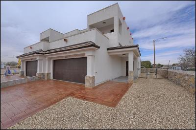 El Paso Single Family Home For Sale: 5613 Secondwood Place #B
