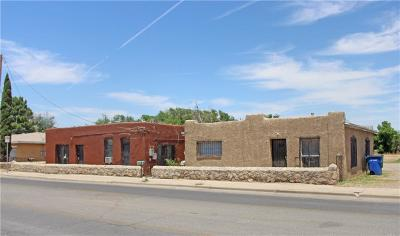 El Paso Multi Family Home For Sale: 317-321 N Carolina #A, B