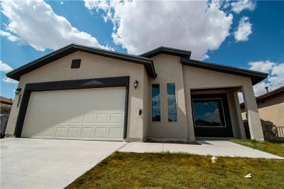 Single Family Home For Sale: 7233 Copper Sky Court