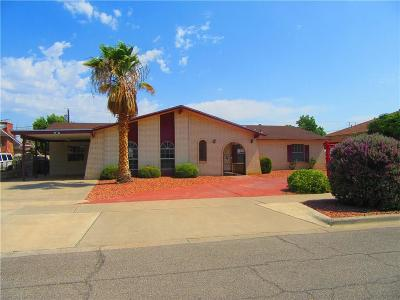 Single Family Home For Sale: 9317 Jacey Court Court