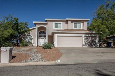 El Paso Single Family Home For Sale: 859 Via Alta Lane