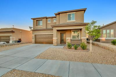 El Paso Single Family Home For Sale: 413 Briarcliff Court