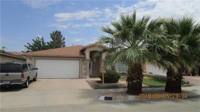 El Paso Single Family Home For Sale: 13725 Paseo Hermoso Drive