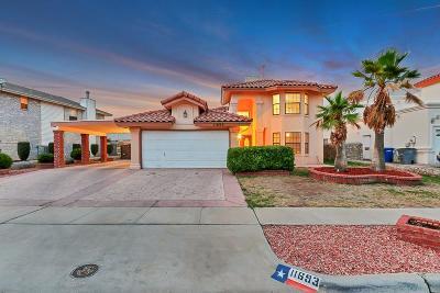 Vista Hills Single Family Home For Sale: 11693 John Weir Drive