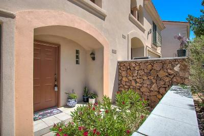 El Paso Condo/Townhouse For Sale: 6258 Escondido Drive