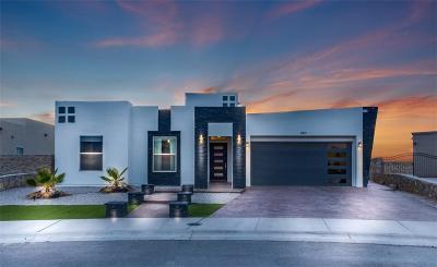 Horizon City Single Family Home For Sale: 663 Allerton Parkway