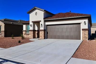 El Paso Single Family Home For Sale: 7773 Enchanted Ridge Drive