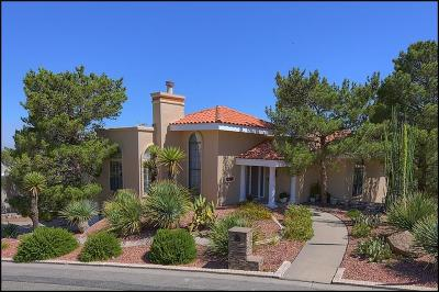 El Paso Single Family Home For Sale: 505 Sharondale Drive
