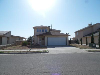Single Family Home For Sale: 424 Cactus Crossing Drive