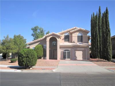 Vista Hills Single Family Home For Sale: 2251 Nancy McDonald Drive