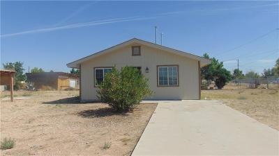 Horizon City Single Family Home For Sale: 891 Agua Nieve Place