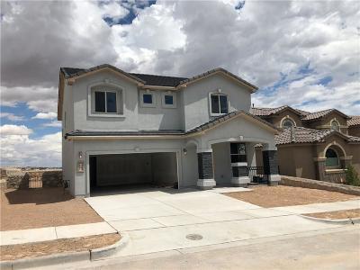 Horizon City Single Family Home For Sale: 432 White Cloud Road