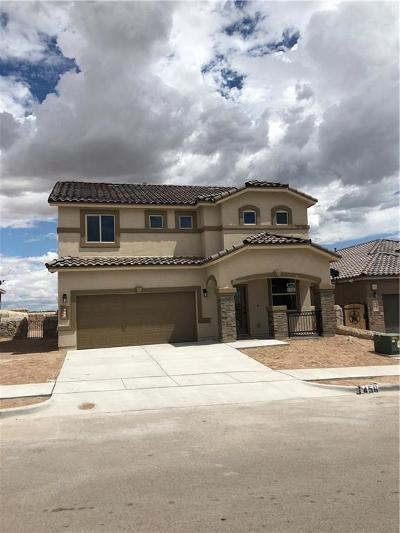 Horizon City Single Family Home For Sale: 456 White Cloud Road