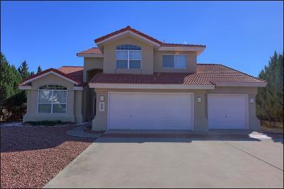 El Paso Single Family Home For Sale: 550 Rosinante Road