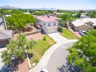 El Paso Single Family Home For Sale: 504 Sandbar Court