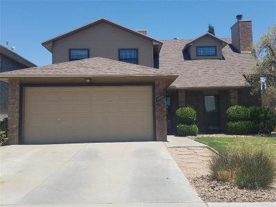 Vista Hills Single Family Home For Sale: 11724 Teachers Drive