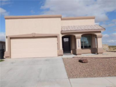 Single Family Home For Sale: 14329 Desert Sky Drive
