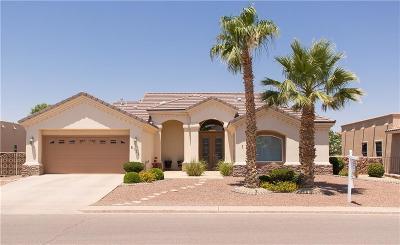 El Paso Single Family Home For Sale: 6131 Via De Los Arboles
