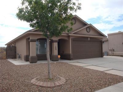 Horizon City Rental For Rent: 749 Desert Sage Drive
