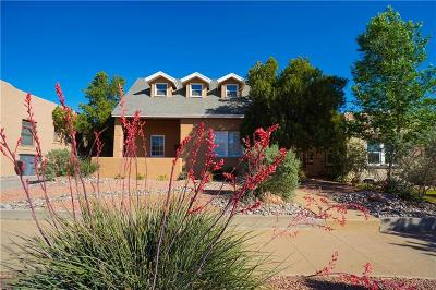 El Paso Single Family Home For Sale: 812 Mississippi Avenue
