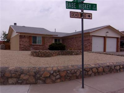 Single Family Home For Sale: 1501 Babe Hiskey Lane