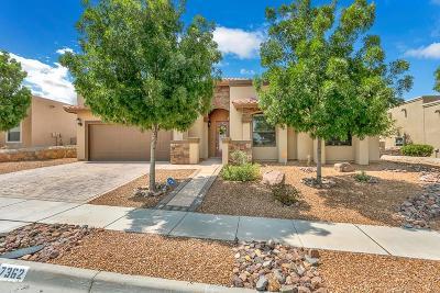 Single Family Home For Sale: 7362 Black Mesa Drive