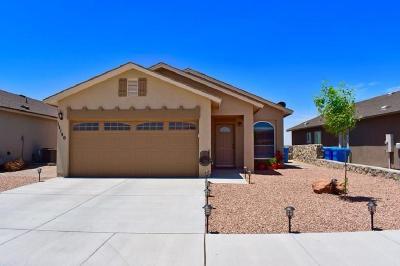 El Paso Single Family Home For Sale: 11140 Ida Coldwell Ln